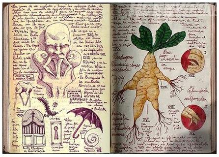 cuadernos Toro